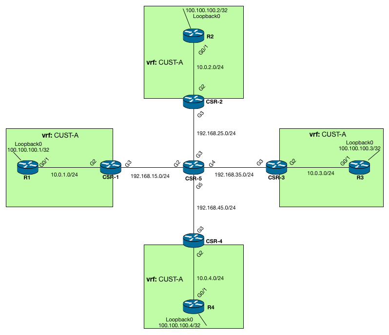 Topology for MPLS VPN's over mGRE
